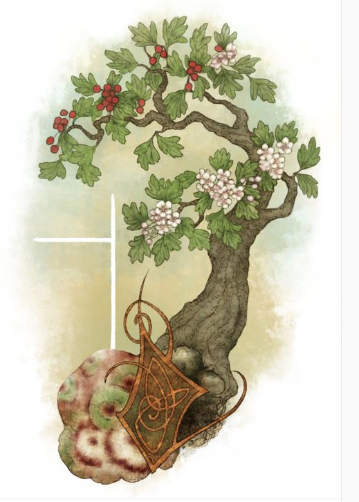 Hawthorn by Lunaria Gold